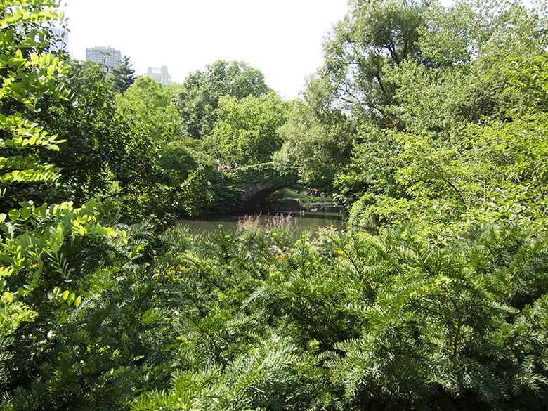 Central-Park-Green