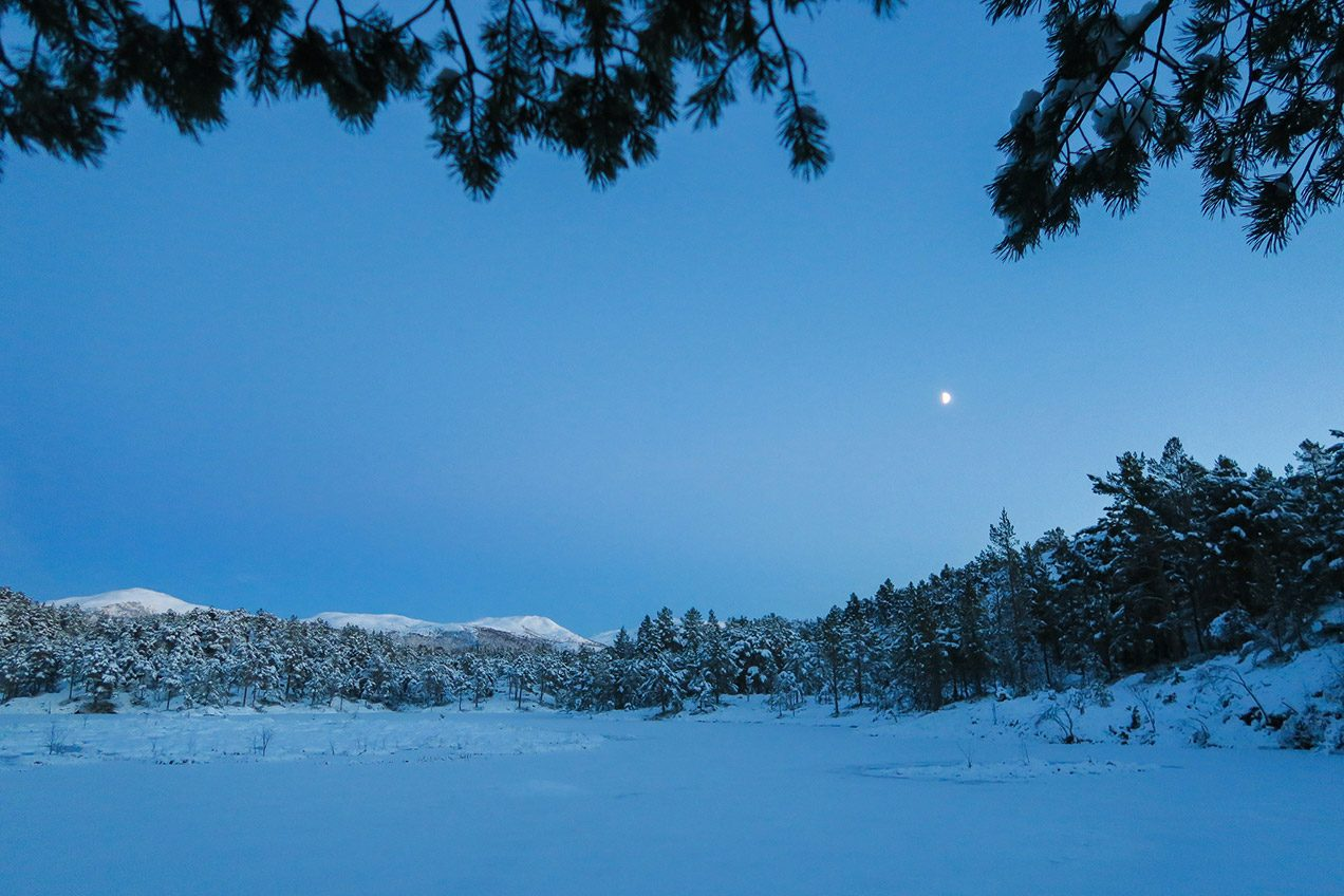 Winter landscape in Norway during dusk with a glowing moon
